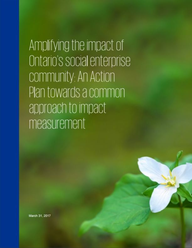 Ontario Social Enterprise Impact Measurement
